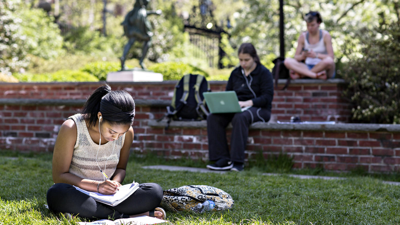 Students Studying on Lawn