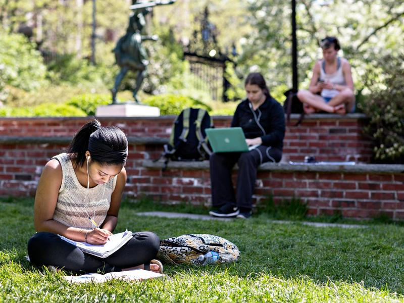 Students studying on a lawn.